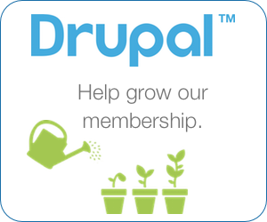 Lucid Softech's support for Drupal fund raising initiative