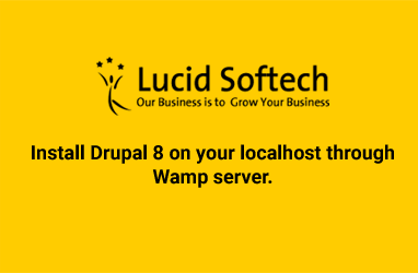Install Drupal 8 on your localhost through Wamp server.